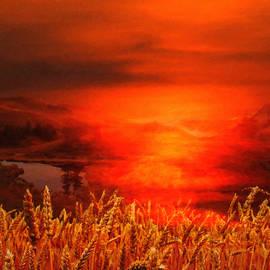 L Wright - Late Night Harvest
