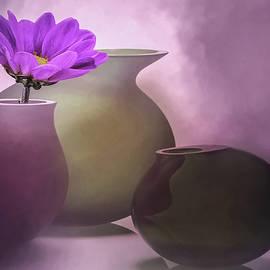 Kathy Franklin - Lavender Still