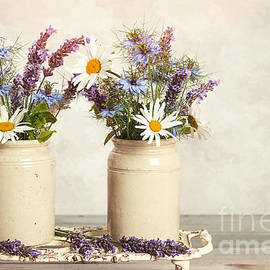 Lavender And Daisies - Amanda And Christopher Elwell