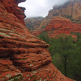 James Peterson - Layered in Red Rock