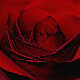 Ernie Echols - Layers of Love