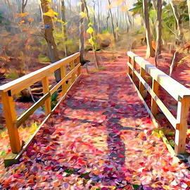 Ed Weidman - Leaf Covered Walkway
