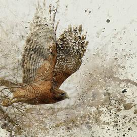 Jai Johnson - Leap of Faith Wildlife Art