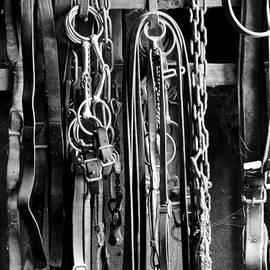 Wilma  Birdwell - Leather and Metal
