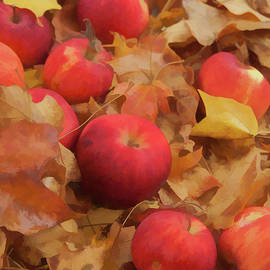 Michael Flood - Leaves and Apples