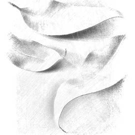 Janina Nowak - Leaves I