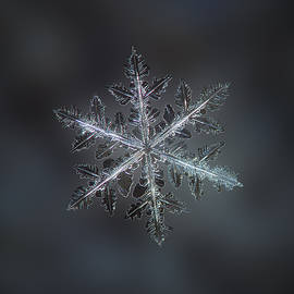 Alexey Kljatov - Leaves of ice II