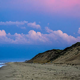 Karen Regan - LeCount Hollow Beach
