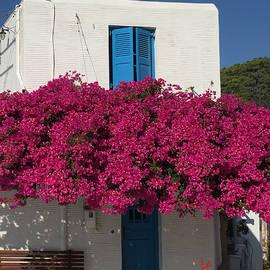 Colette V Hera  Guggenheim  - Lefkes mountain hause Paros Island