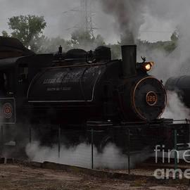 Linda Troski - Lehigh Steam Coal Engine 126