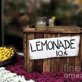 Sabrina Wheeler - Lemonade Stand