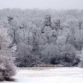 Miguel Winterpacht - Let it Snow