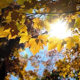 Angela Davies - Let The Sun Shine In