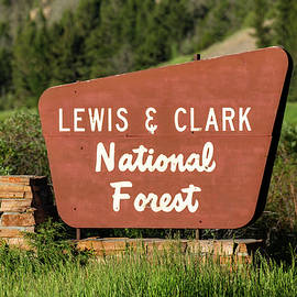 Lewis and Clark National Forest - Todd Klassy