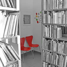 Damijana Cermelj - Library2