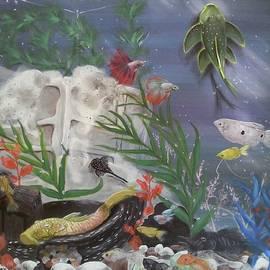 Judit Szalanczi - Life in the aquarium