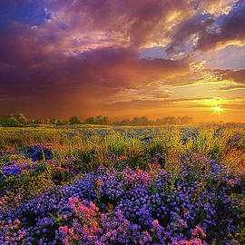 Phil Koch - Life Is Measured In Moments