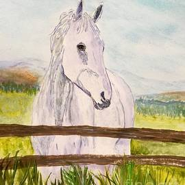 Anne Sands - Life of a horse