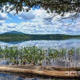 Lisa Kilby - Life On The Lake 3