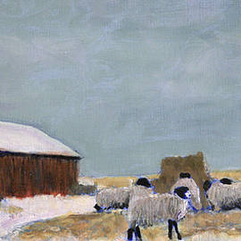 David Zimmerman - Life on the Prairie