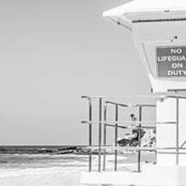 Lifeguard Tower Black and White Panorama Photo - Paul Velgos