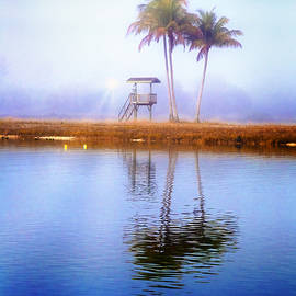Debra and Dave Vanderlaan - Lifeguard Tower Under the Palms