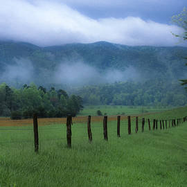 Sandra Bronstein - Lifting Fog in Cades Cove