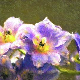 Sandi OReilly - Light Blue Belladonna Delphiniums