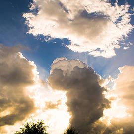 Parker Cunningham - Light from the Heavens