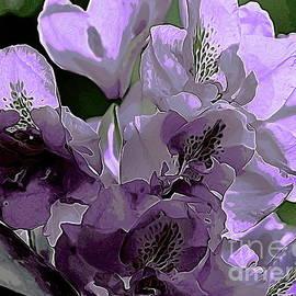 Erica Hanel - Light Purple Rhodie