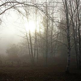 Debbie Oppermann - Light Through The Fog