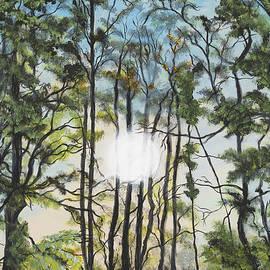 Donna Mann - Light Through The Forest