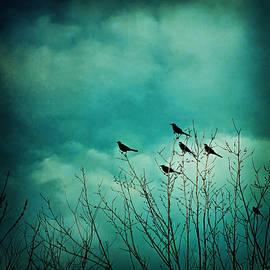 Trish Mistric - Like Birds on Trees
