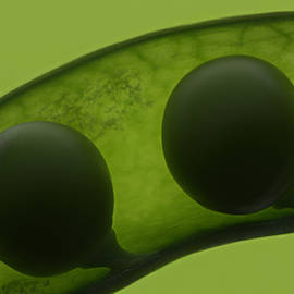 Janeen Wassink Searles - Like Two Peas in a Pod