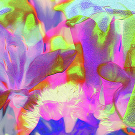 Ericamaxine Price - Lily Abstract 1