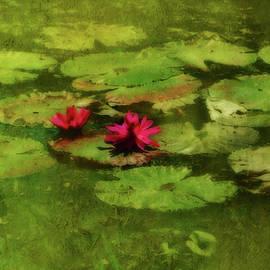 Kathy Franklin - Lily Pond