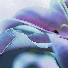 Tracy F - Lily Watercolor Abstract