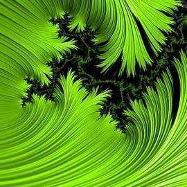 Barbara Zahno - Lime Green Exhilaration