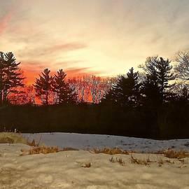 Elizabeth Tillar - Lingering Winter