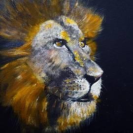 Asa Jones - Lion