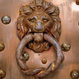 William Krumpelman - Lion Door Knocker