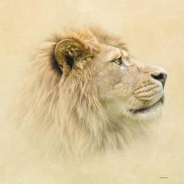 Roy  McPeak - Lion II
