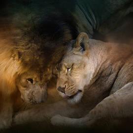 Jai Johnson - Lion Love
