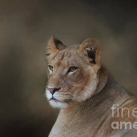 Kathleen Rinker - Lioness