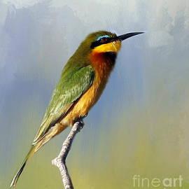 Myrna Bradshaw - Little Bee-eater