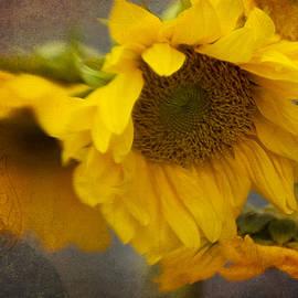 Beverly Stapleton - Little Bit of Sunshine