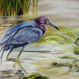 Phyllis Beiser - Little Blue Heron In The Bay