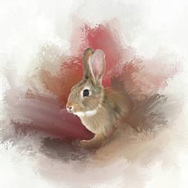 Mary Timman - Little Bunny