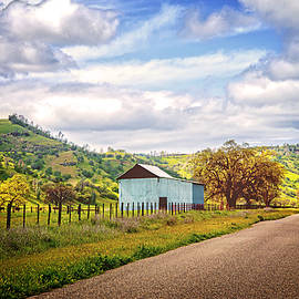 Lynn Bauer - Little Country Road in California