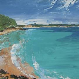 Chris Hobel - Little Cove View